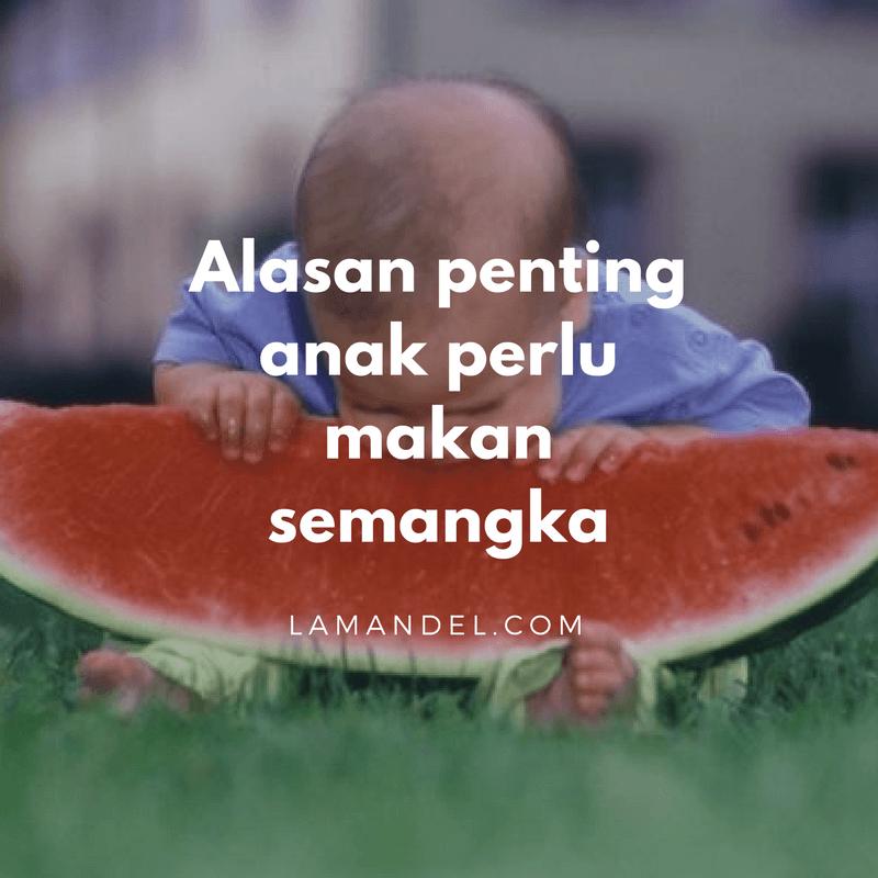 alasan penting anak perlu makan semangka (1)