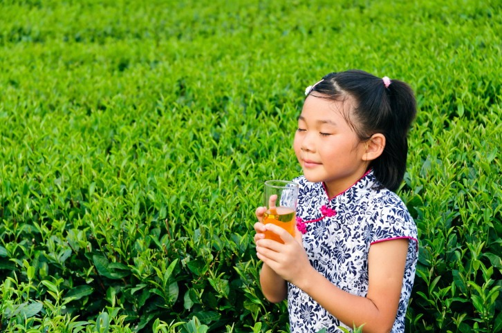 The little girl in the tea  plantation