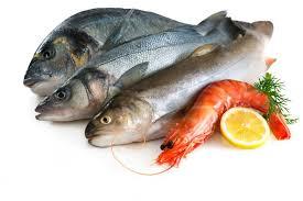 ikan sumber protein, harus makan ikan, radang amandel, amandel bengkak, obat penyakit amandel