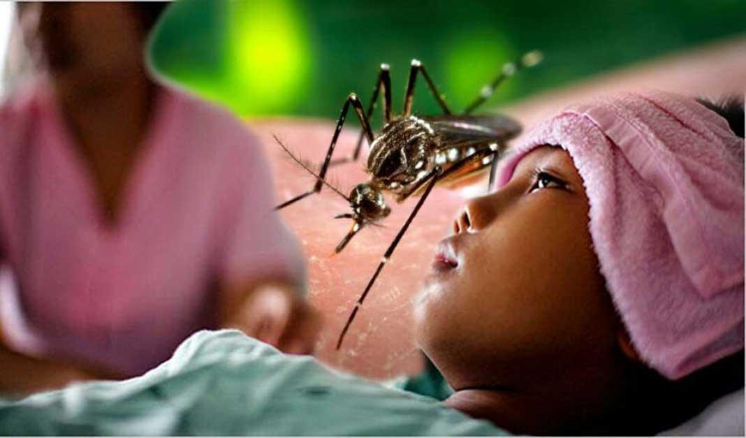 penyakit saat musim hujan, demam berdarah, obat amandel, radang amandel