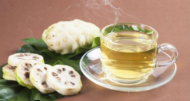 mengkudu, obat tradisional amandel, radang amandel