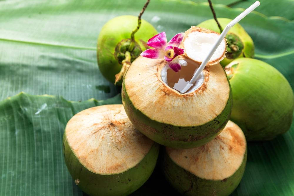 kelapa muda 2