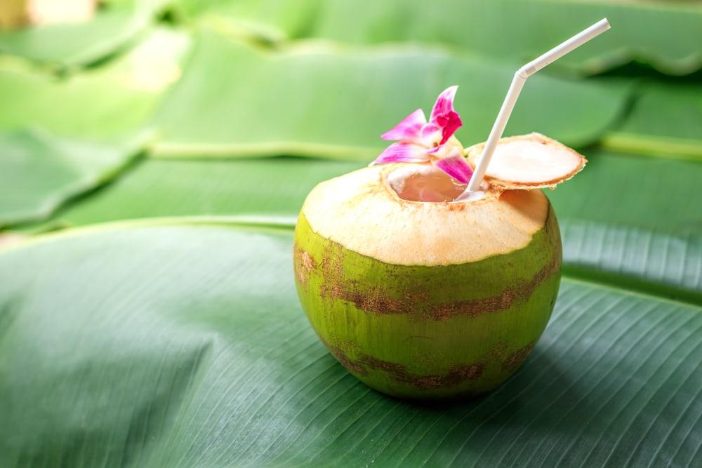 Tak hanya menjadi muniman menyegarkan, kelapa muda punya banyak manfaat