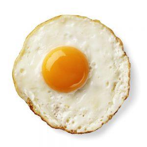 telur 4